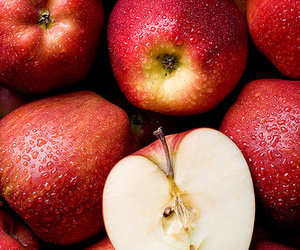 apple and photography image