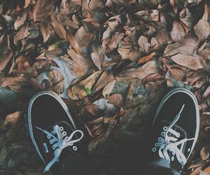 vans, autumn, and shoes image