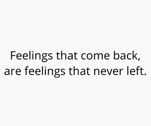 quote, feelings, and true image