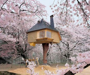 house, japan, and tree image