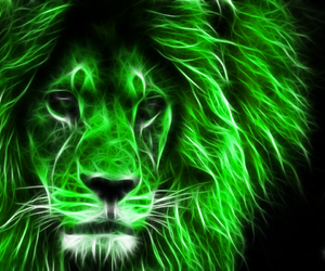 background, lion, and wallpapers image