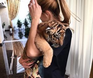 animal, baby, and girl image