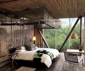 bedroom, bed, and forest image