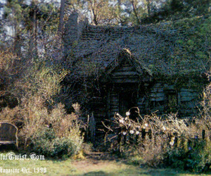 cottage, witchcraft, and forest image