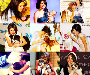 dogs and selena gomez image