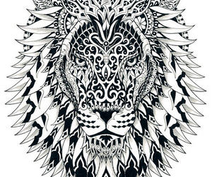 lion, mandala, and drawing image