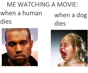 funny, dog, and movie image
