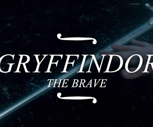 gryffindor, harry potter, and hermione image