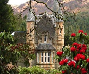 castle, flowers, and scotland image