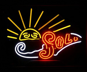 neon and sol image