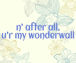 oasis, you, and wonderwall image