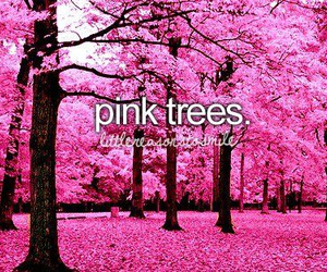pink, tree, and pink trees image