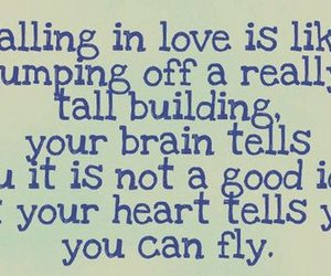 love, heart, and fly image