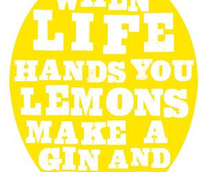 gin, lemons, and life image