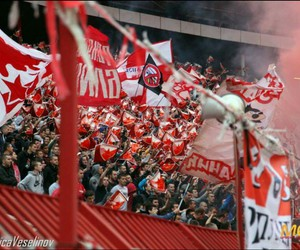 red star belgrade, ultras, and crvena zvezda image