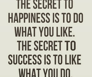happiness, success, and quotes image