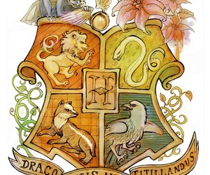 gryffindor, hogwarts, and slytherin image