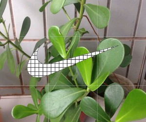 nike, plants, and green image