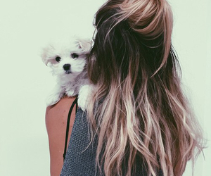 girl, dog, and hair image