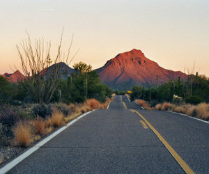 road, summer, and sunset image
