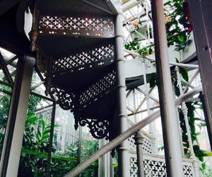 botanic garden, garden, and glass image
