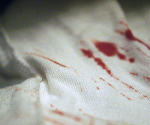 blood and sheets image