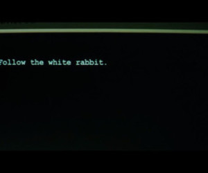 matrix, rabbit, and film quotes image