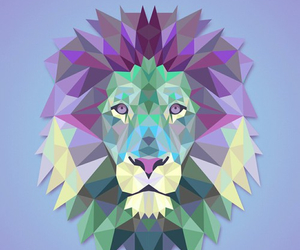 lion, animal, and cat image