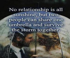 Relationship, share, and survive image