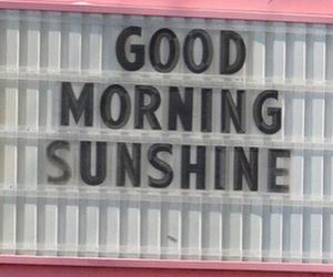 pink, sunshine, and morning image