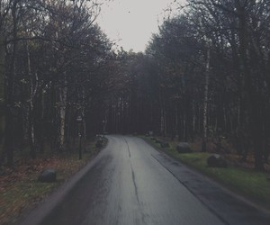 road, background, and forest image