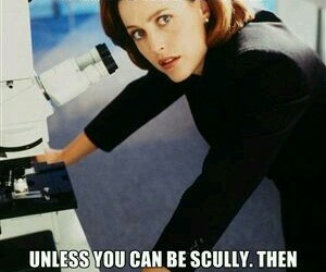 dana scully and the xfiles image