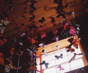 butterfly, window, and vintage image