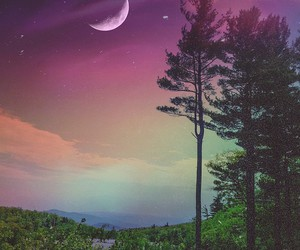 tree, beautiful, and moon image