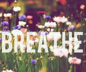 breathe, flowers, and quote image