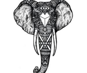 animal, drawing, and elephant image