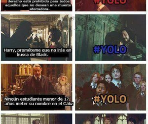 yolo, harry potter, and funny image