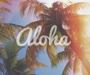 Aloha, summer, and palms image