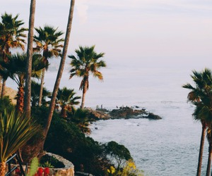summer, ocean, and nature image