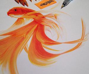 fish, drawing, and art image