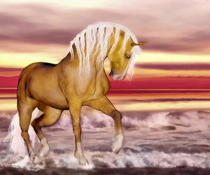 golden, horse, and seascape image