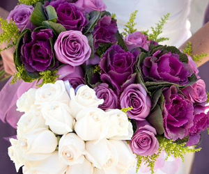 beautiful, roses, and wedding image
