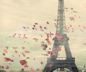 flowers, paris, and Dream image