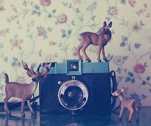 camera, deer, and vintage image