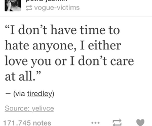 quotes, i dont care, and love image