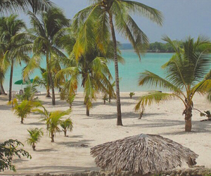 beach, dominican, and dr image