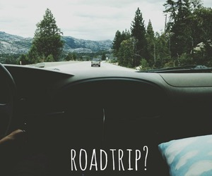 car, forest, and grunge image