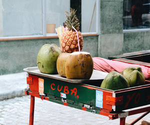 coconut, cuba, and fruit image