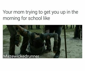 dylan, funny, and the maze runner image