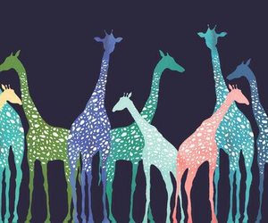 colors, giraffe, and wallpaper image